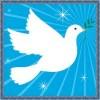IPB Nobel Peace Proze Nomination